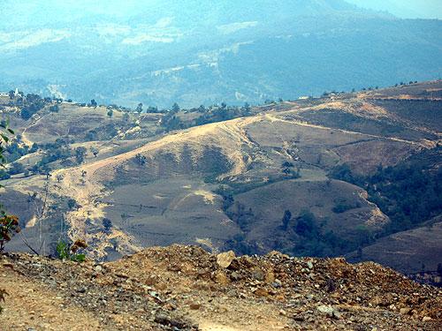 Deforestación en la Montaña de Guerrero © SIPAZ