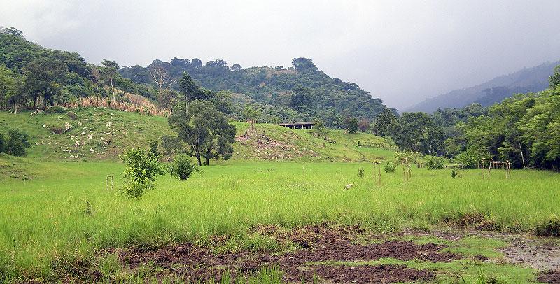 San Patricio, Sabanilla, northern zone © SIPAZ