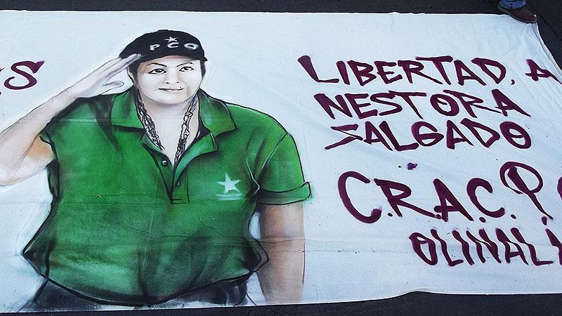 Nestora Salgado, pancarta en una marcha en Chilpancingo, febrero de 2015 © SIPAZ