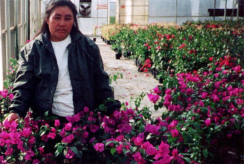 Doña Juana con las flores © Voces mesoamericanas